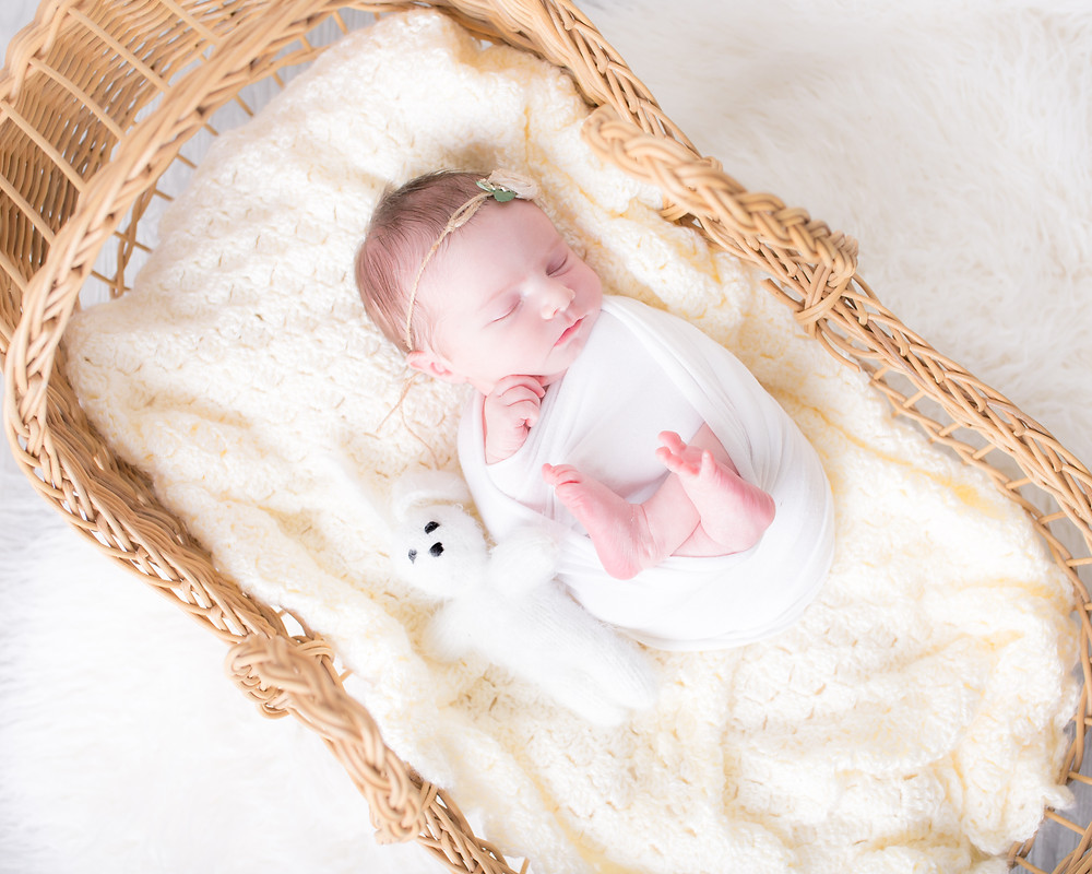 dallas Newborn photography, lexi meadows photography, moses basket