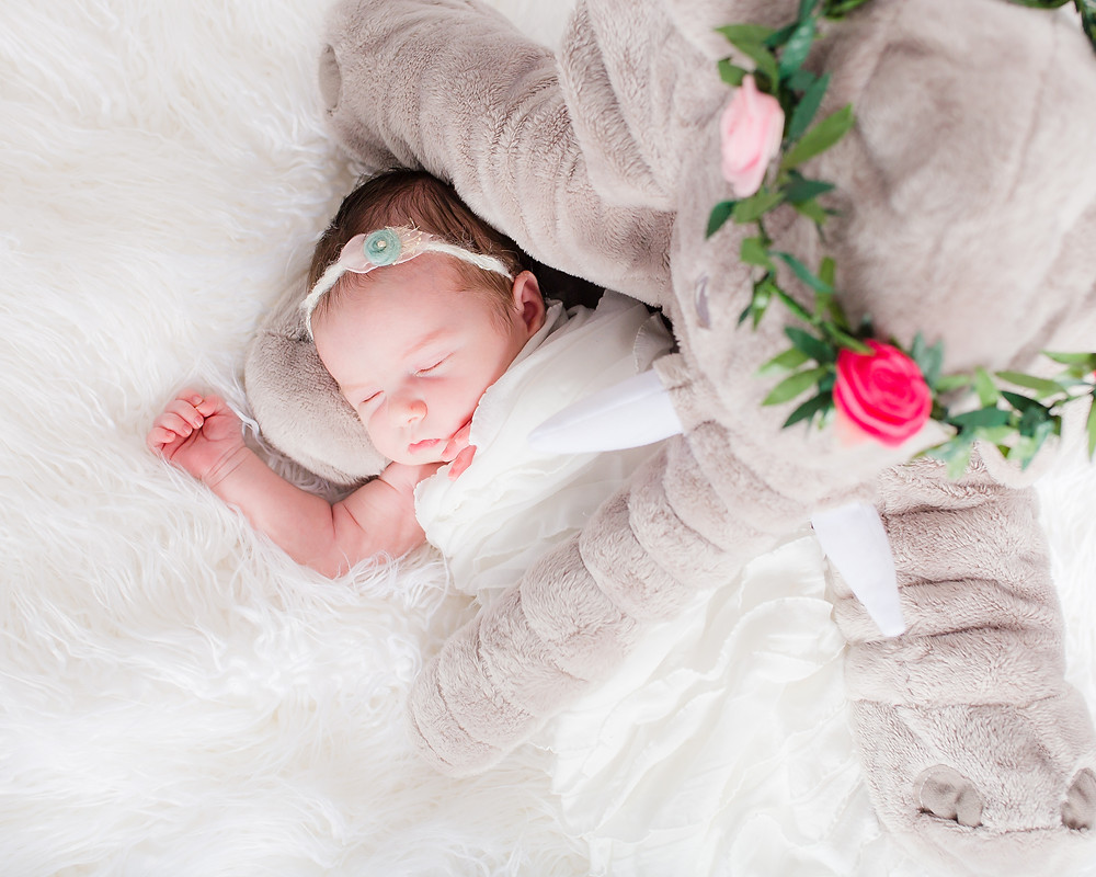 dallas newborn photographer, lexi meadows photography, baby and toy