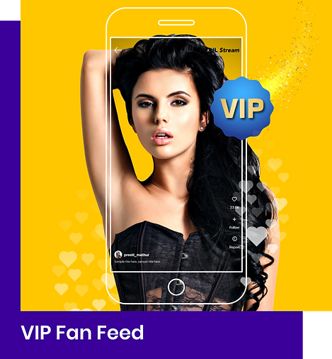VIP FanFeed_2x.png