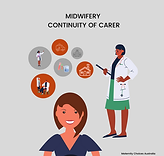 Midwifery Continuity of Carer.png