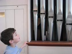 Meet the Organ