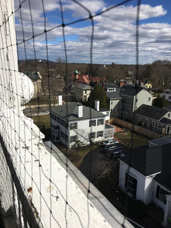 Veiw from the bell tower