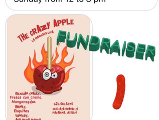 The Crazy Apple fundraiser: yummy treats the whole family can eat!