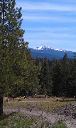 View at Ponderosa Park
