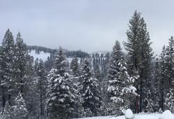 Adams Co. in winter
