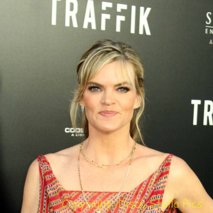 Missi Pyle - Traffik Cast Actress 2