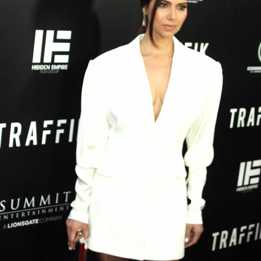 Roselyn Sanchez - Traffik Cast Actress