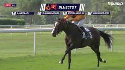 Bluectot (FR)