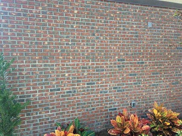 bonita springs brick masonr