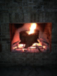 Wood Burning Fireplace Naples Florida