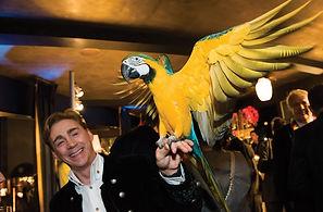 Animal perroquet pour evenement et soiree