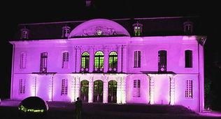 decoration lumiere evenement exterieur