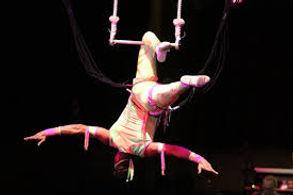 animation danseuses trapézistes pour evenement, animation danseuses trapézistes, animation danseuses, animation danseuses trapézistes pour soiree et evenement