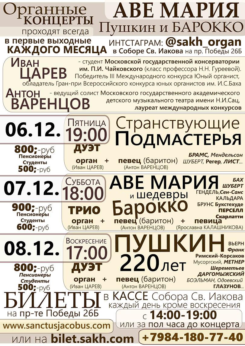Программа - Концерты 12 А4 2.jpg