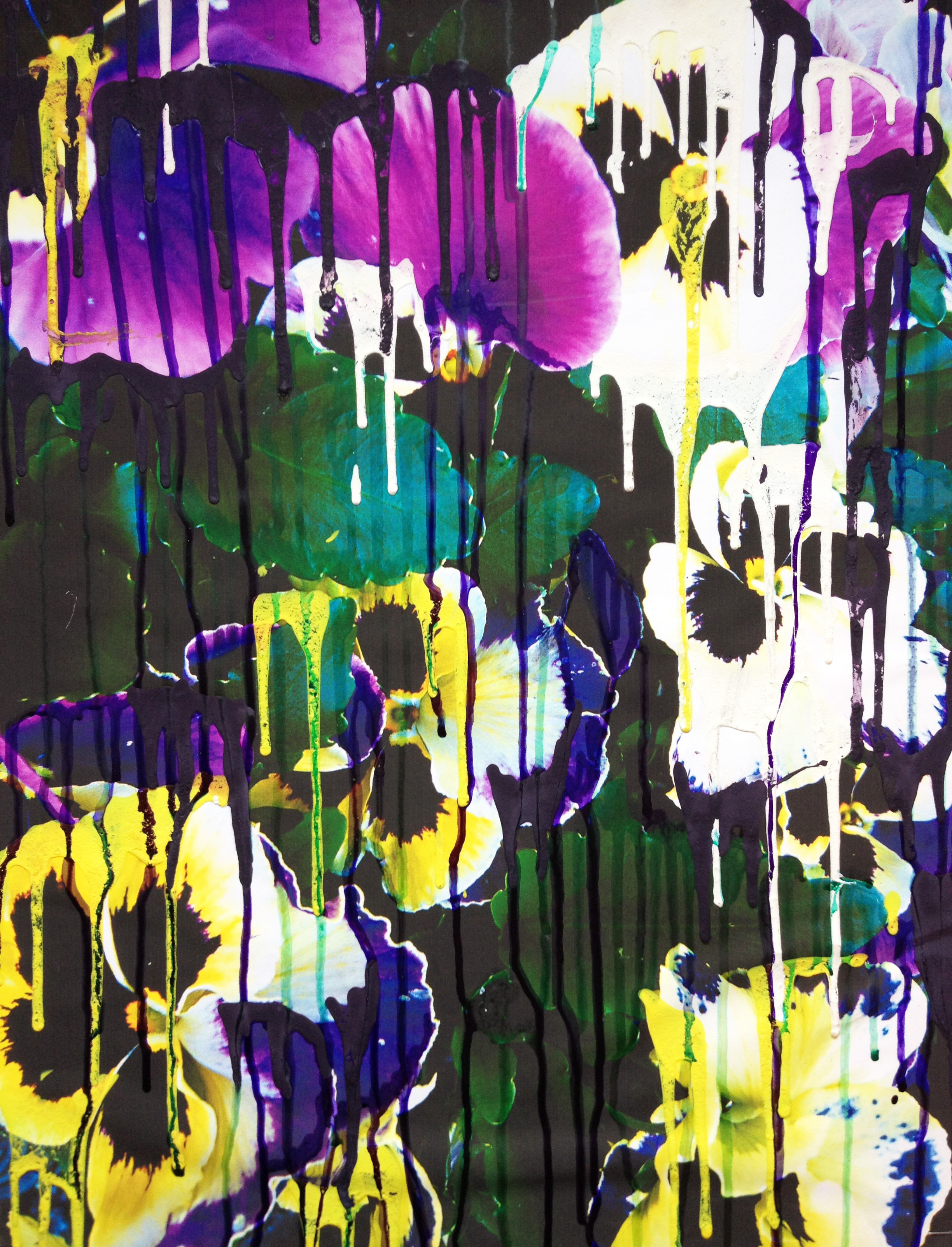 MELTING PANSIES