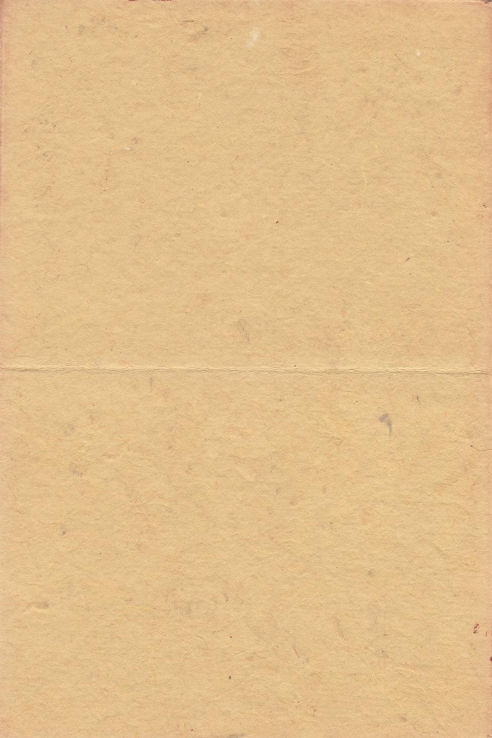 paper_texture_brown_raw_light_brush_book