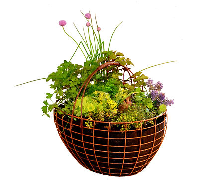 Rust Basket for plants 43x34x22(h) cm