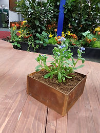 Bord Planteringskärl kvadratiska  15x15x10