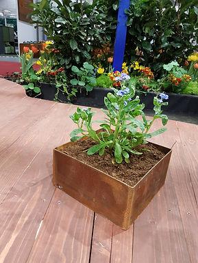 Bord Planteringskärl kvadratiska  20x20x10