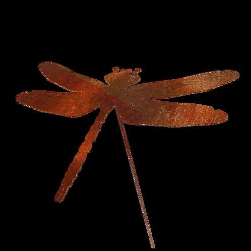 Corten dragonfly