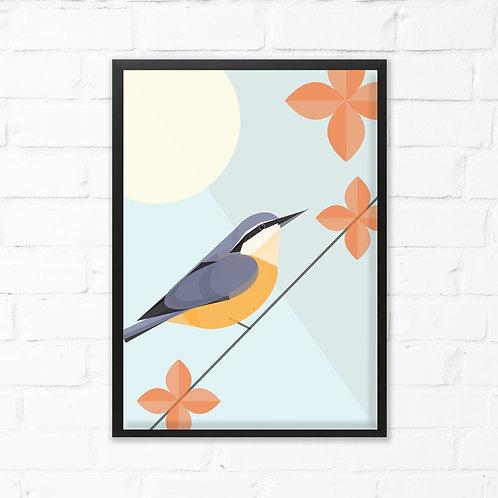 Nuthatch Bird Print