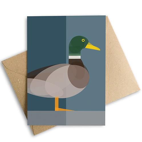 Duck Greetings Card