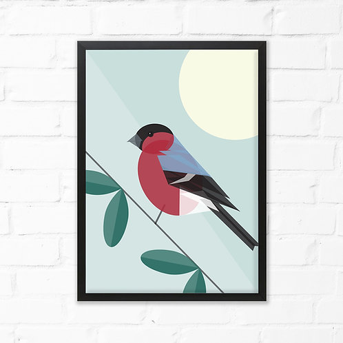 Bullfinch Bird Print