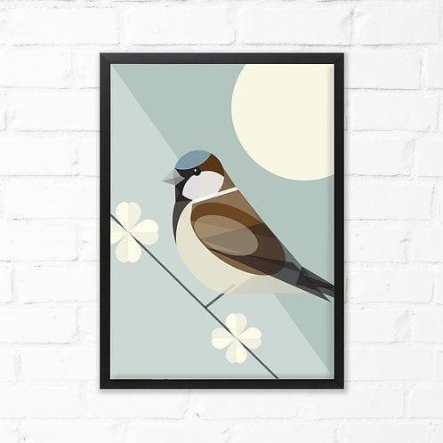 Sparrow Bird Print