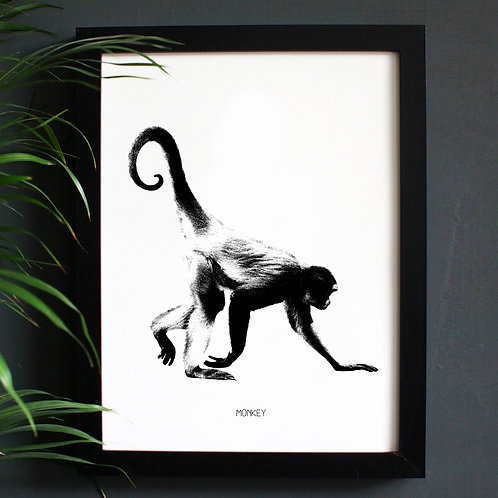 Monkey Engravings Art Print