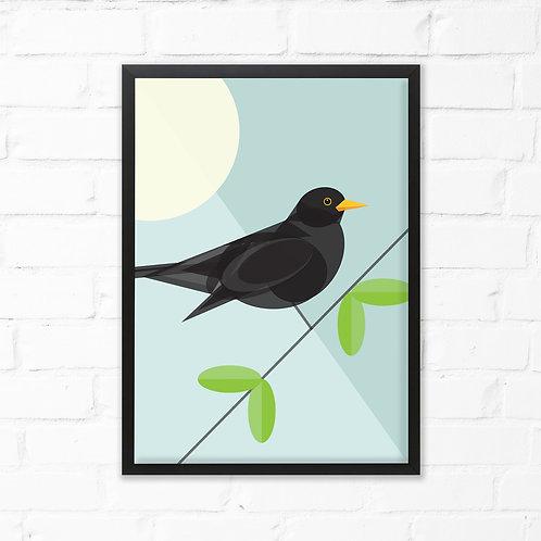 Blackbird Bird Print