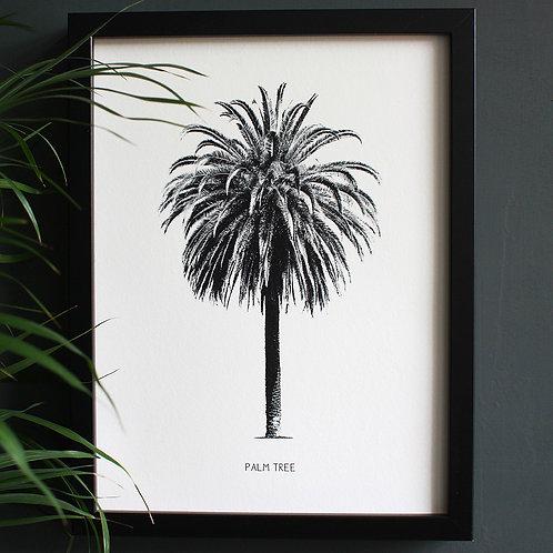 Palm Tree Engravings Art Print