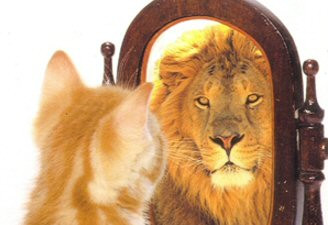Things To Not Believe About Confidence