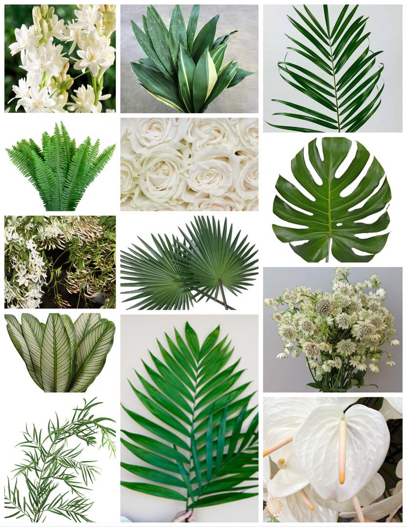 White Tropical Wedding Flowers Mood Board by Jori Krenzel | Floral Designer