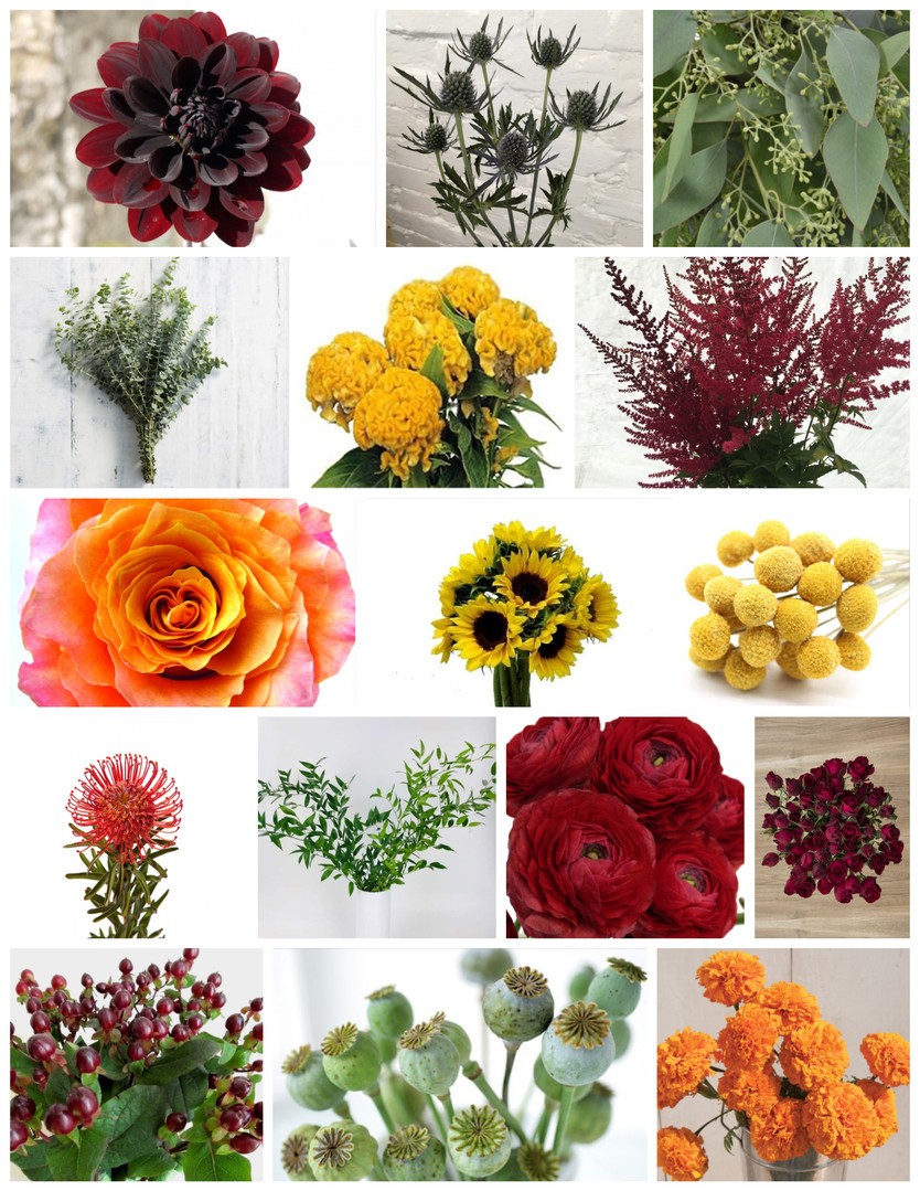 Bright Fall Colors Wedding Flowers Mood Board by Jori Krenzel | Floral Designer