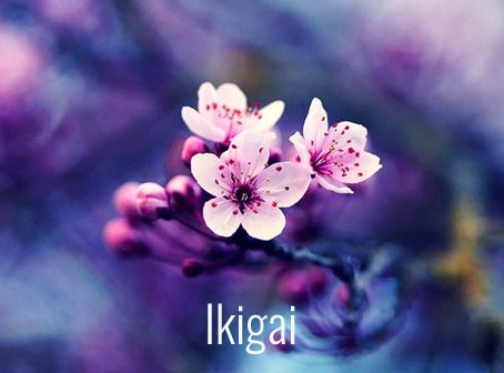 Ikigai, El Secreto de Japón
