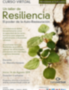 flyer-resiliencia (1).png
