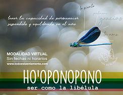 flyer taller_hoponopono para la vida cot