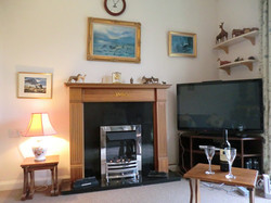 Cosy lounge with gas fire and TV