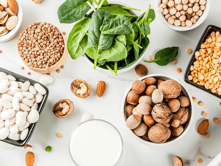 Vegan Protein Options