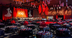 VSO Gala 2020