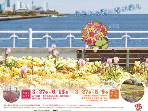 【Mobi Gen】「ガーデンネックレス横浜2021」期間中、山下公園にてMobi Genがキッチンカーへの電力供給を行いました。