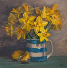 Cornish jug and daffodils