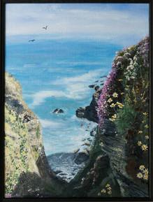 Downhedge Cove