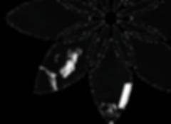 logo-ltp-02.2.png