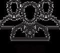 Lotus TechPros | Team