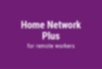 Lotus TechPros | Home Network Plus for remote workers
