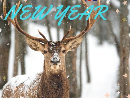 """""""Как новый год встретишь…"""" Туры в сказку! Финляндия 2019"""