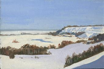 Зима в есенинском краю