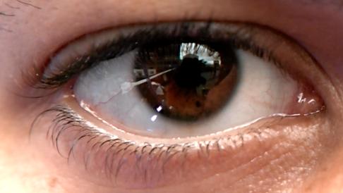 Shire Eyelove Art Installation Case Study