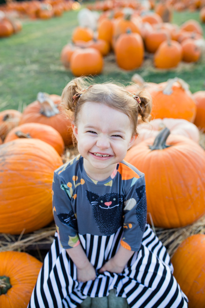 Pumpkin Patch Mini Sessions 2018